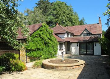 Thumbnail 3 bed detached house for sale in South Perrott, Beaminster, Dorset
