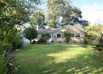 Thumbnail 3 bed detached bungalow for sale in The Limes, Rushmere St Andrew, Ipswich