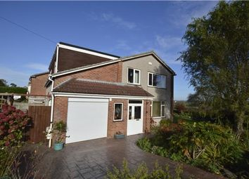 Thumbnail 5 bedroom detached house for sale in Pendock Road, Winterbourne, Bristol
