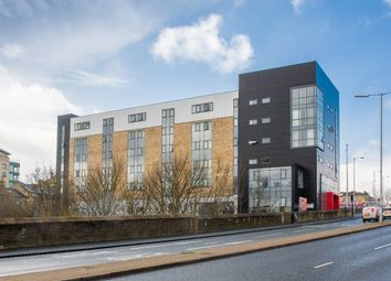 Thumbnail Studio to rent in Appleton Point, Bradford