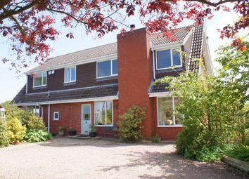 Thumbnail 4 bed detached house for sale in School Lane, Rochford