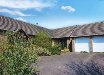 Thumbnail 3 bed detached bungalow for sale in Streetway Lane, Cheselbourne, Dorchester