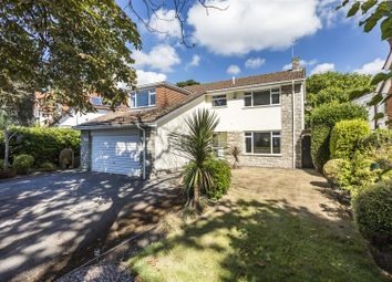 Thumbnail 4 bed detached house for sale in Haydon Road, Branksome Park, Poole