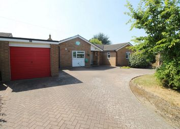 Thumbnail 3 bed detached bungalow for sale in Drury Lane, Colne, Huntingdon