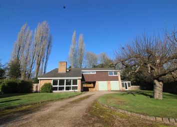 Thumbnail 4 bedroom detached house to rent in Fieldgate Lane, Kenilworth
