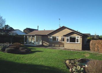 Thumbnail 4 bed bungalow to rent in Manor Road, Pitsford