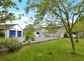 Thumbnail 4 bed detached bungalow to rent in Rook Street, Mere, Wiltshire