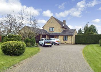 Thumbnail 4 bedroom detached house to rent in The Paddocks, Orlingbury, Northamptonshire