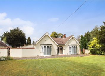 Thumbnail 5 bedroom detached bungalow for sale in New Barn Road, New Barn, Longfield