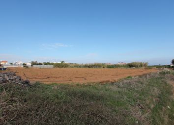 Thumbnail Land for sale in Ayia Triada, Famagusta, Cyprus
