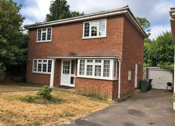 Thumbnail 4 bed detached house to rent in Brunswick Drive, Brookwood, Woking