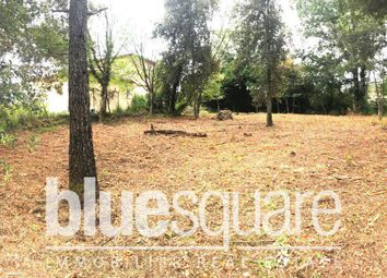 Thumbnail Land for sale in Valbonne, Alpes-Maritimes, 06560, France