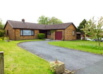 Thumbnail 3 bed bungalow for sale in Bloomfield Gardens, Narberth