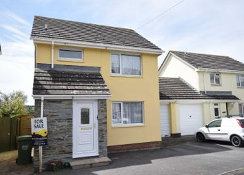 Thumbnail 3 bed link-detached house for sale in Hunterswood, Torrington