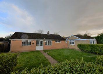 Thumbnail 4 bed detached bungalow to rent in Loddington Lane, Belton In Rutland, Oakham
