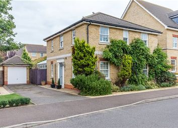 Thumbnail 4 bedroom detached house for sale in The Linnets, Cottenham, Cambridge