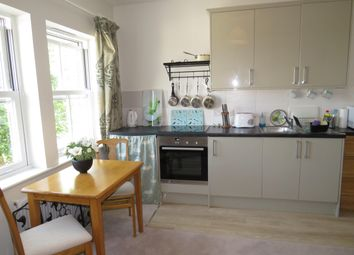 Thumbnail 1 bed flat to rent in York Road, Salisbury