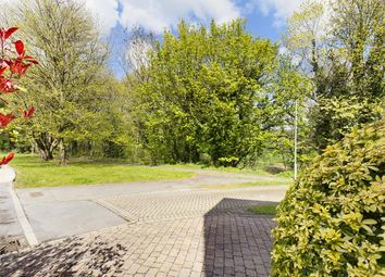 Rothey Grove, Linacre Woods, Chesterfield S40
