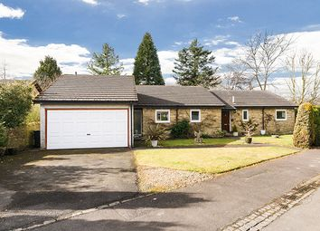 Thumbnail 4 bed detached bungalow for sale in 8 Willow Dyke, Corbridge, Northumberland