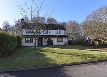 Thumbnail 5 bed detached house for sale in Majestic Road, Basingstoke