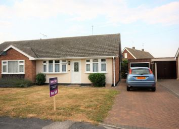 Thumbnail 2 bed bungalow for sale in Chestnut Avenue, Chelmsford