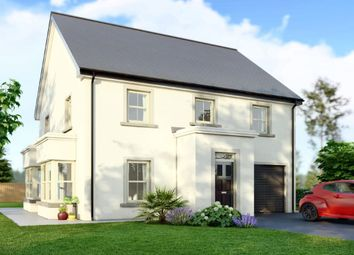 Thumbnail 4 bed detached house for sale in Millmount Village, Dundonald, Belfast