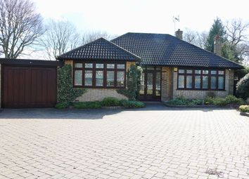 Thumbnail 2 bedroom bungalow to rent in Bracken Drive, Chigwell