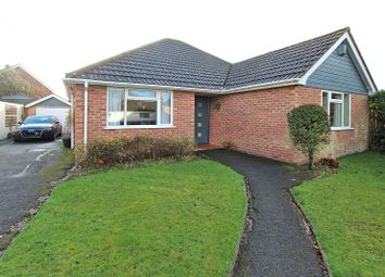 Thumbnail 3 bed bungalow for sale in Chestnut Road, Brockenhurst, Hampshire