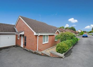 Thumbnail 2 bed bungalow for sale in Ottery St. Mary, Devon
