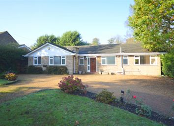 Thumbnail 3 bed detached bungalow to rent in High Road, Chipstead, Coulsdon