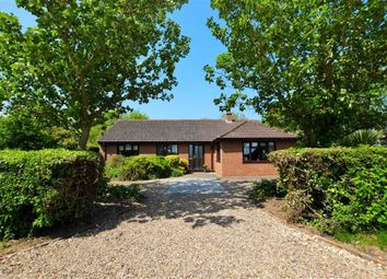 Thumbnail 4 bed bungalow for sale in Long Gate, Saltfleetby, Louth