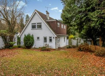 Thumbnail 3 bed bungalow for sale in Windlesham, Surrey