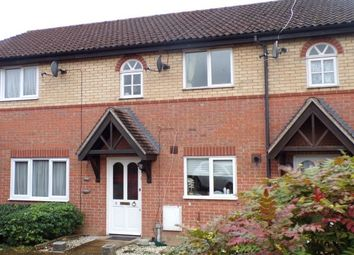 Thumbnail 2 bed property to rent in Tyler Way, Brentwood
