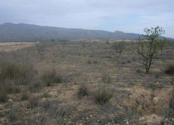 Thumbnail Land for sale in 30520 Jumilla, Murcia, Spain