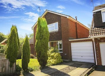 Thumbnail 4 bed detached house to rent in Shannon Court, Kingston Park, Newcastle Upon Tyne