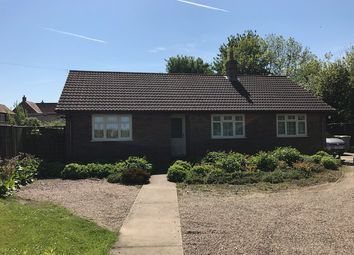 Thumbnail 3 bed detached bungalow to rent in Back Lane, North Cockerington, Louth