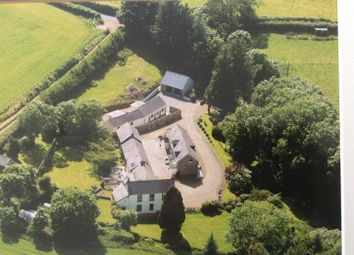 Thumbnail 5 bed detached house for sale in New Mill, St. Clears, Carmarthen