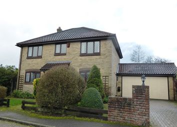 Thumbnail 4 bed detached house for sale in Barn Tye Close, Guston
