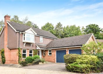 Thumbnail 4 bed detached house for sale in The Woodlands, Wokingham, Berkshire