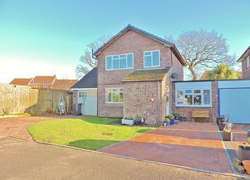 Thumbnail 4 bed detached house for sale in Ingrams Way, Hailsham