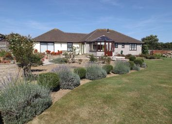 Thumbnail 4 bed bungalow for sale in Connor Downs, Hayle, Cornwall
