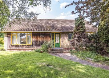 Thumbnail 3 bed detached bungalow to rent in Main Road, Otterbourne, Winchester