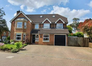 Thumbnail 6 bed detached house for sale in Peninsular Close, Camberley, Surrey