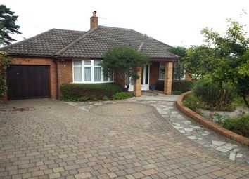 Thumbnail 4 bed bungalow to rent in Kings Walk, West Kirby, Wirral