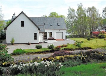 Thumbnail 5 bed detached house for sale in Glenuig, Lochailort