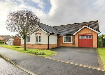 Thumbnail 3 bed detached bungalow for sale in 6 The Beeches, Maryport, Cumbria