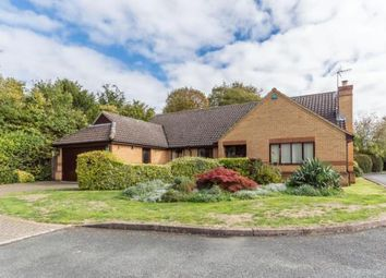 Thumbnail 4 bed bungalow for sale in Great Shelford, Cambridge, Cambridgeshire