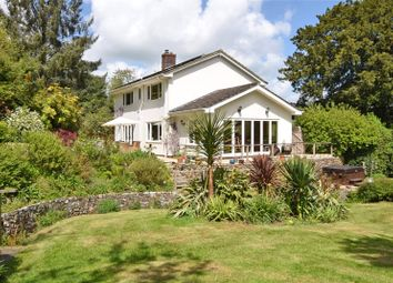 Thumbnail 4 bed detached house for sale in Ham, Dalwood, Axminster, Devon