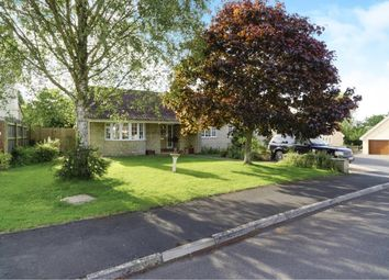 Thumbnail 4 bed detached bungalow for sale in Walnut Close, Rode, Frome
