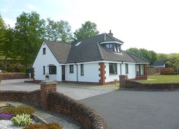 Thumbnail 3 bed detached house for sale in Auldgirth, Dumfries